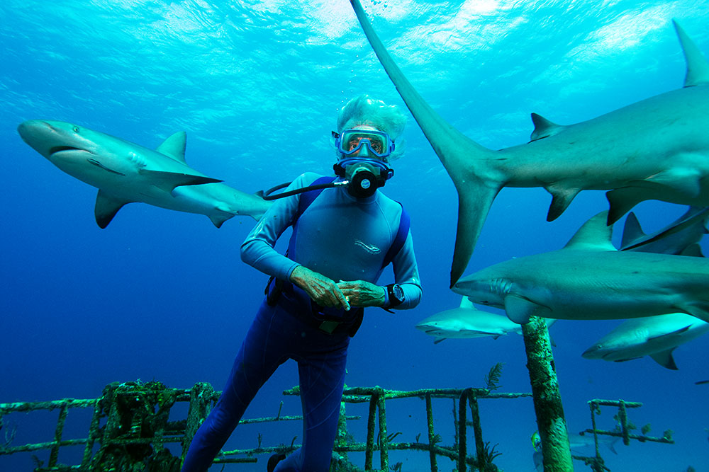 Wonders of the Sea 3D, A Film Review by Marc Glassman featured image
