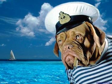 OLD_SEA_DOG_Wallpaper_1pmtc