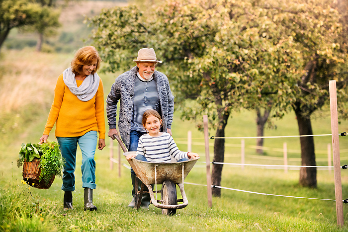 Senior couple with grandaughter gardening in the backyard garden; Shutterstock ID 749267113; Cost center/AP:  8861; Project Name (the full project name will include #): 3287-1117 Edit 2018 Zoomer Online Banners; TD Contacts (include approver and designer names here):  Megan Nehil / Michael McAnea; LOB: MBNA / CUETs - MBNA Affinity