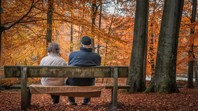couple-on-bench-fall