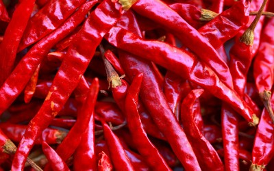 Spicy Food and Longevity