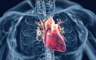 Hypochondria and Heart Disease