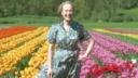CarmenTV EP 67 Tulips