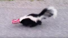 Skunk - Pop Can