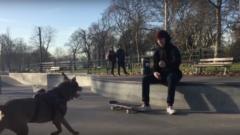 Skateboarding Dog
