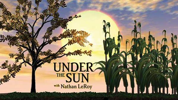 Under_the_Sun_574x358