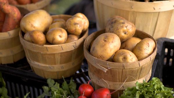 OrganicPanic_Food_MarketProduce_600[1]