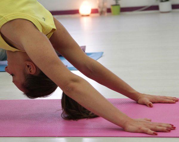 web_yoga