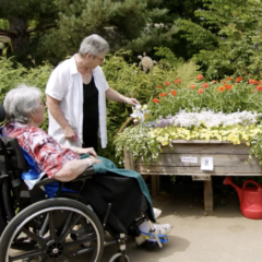 Ageless Gardens Highlight: Hospital Therapy Garden
