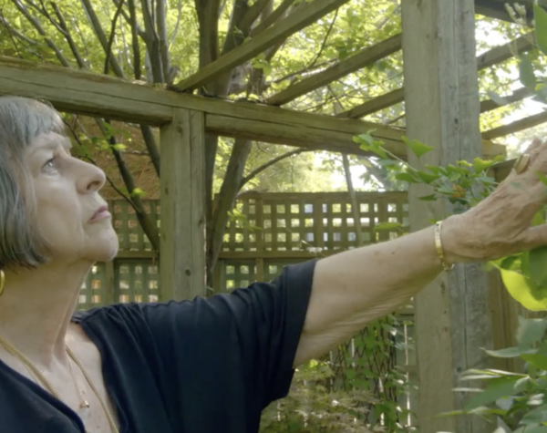 Ageless Gardens - Marjorie Harris