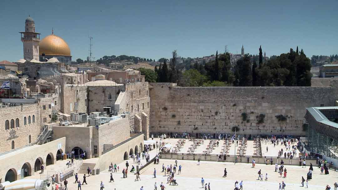 IP: Red Heifer - The Western Wall, Jerusalem
