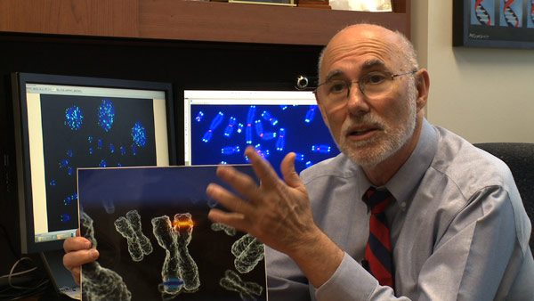 Taking Back The Years: Dr. Jerry Shay explains telomeres.