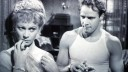 Vivien Leigh and Marlon Brando star in A Streetcar Named Desire