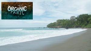 Organic Panic S2