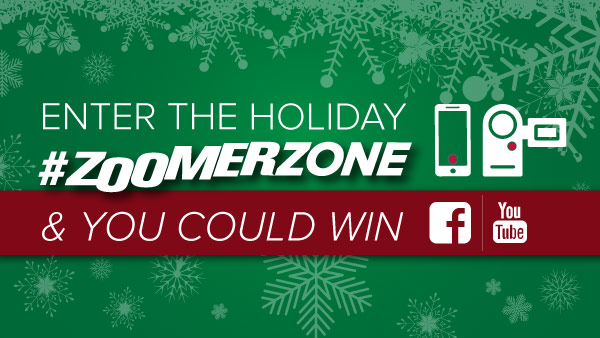Enter the Holiday ZoomerZone