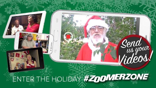 Holiday ZoomerZone 2016
