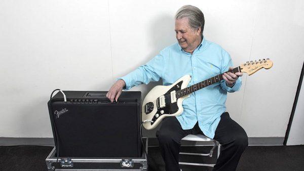 Brian Wilson - Guitar