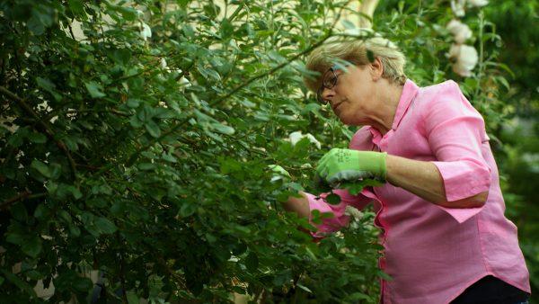 Ageless Gardens S1E4: Charlie Dobbin, host of The Garden Show on ZoomerRadio