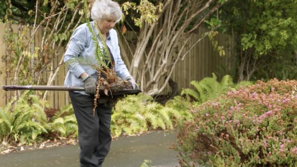 Ageless Gardens - Wild Garden