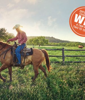 Win a Trip to Beat the Winter Blues in Texas!