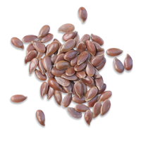 Flax_seeds
