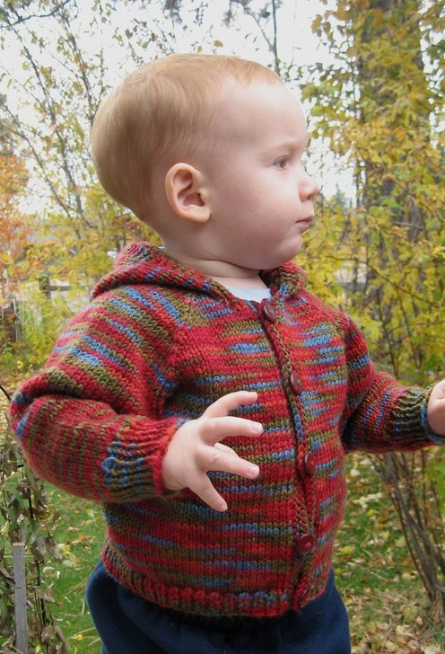 https://d24b8wp6jbsvpy.cloudfront.net/pattern_picture_w496s/54463/982_baby_cardi.jpg