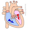 Core Cardiology for Medical Students
