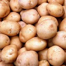 Potatos_normal