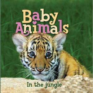 Baby Animals in the Jungle