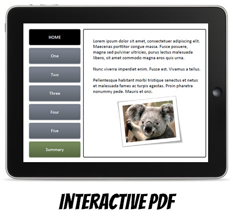 The Rapid E-Learning Blog - create interactive PDFs that you can view on your iPad