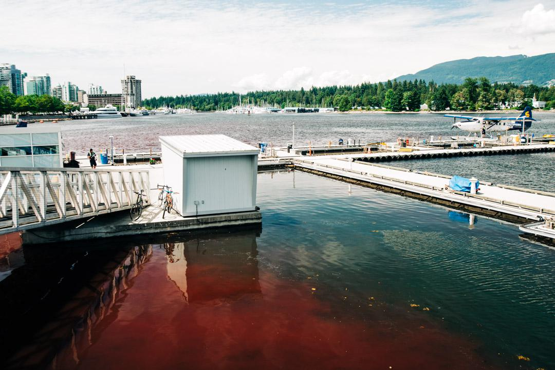 Red Tide in Coal Harbour