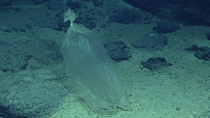 This should not be in the deepest part of the ocean