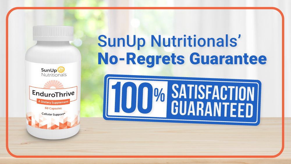 No Regret Guarantee