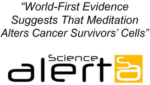 How meditation curates gene expression and cools cancer