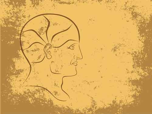 Hippocampus, Stress, & Depression