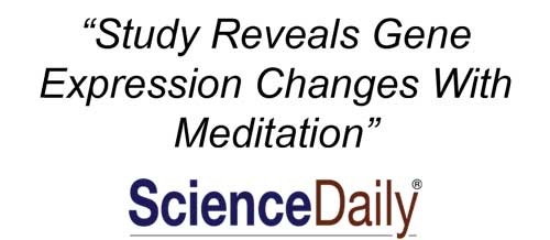 the latest telomere lengthening research says meditation is key
