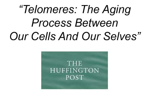 why meditation is the best anti aging method, lengthens telomeres