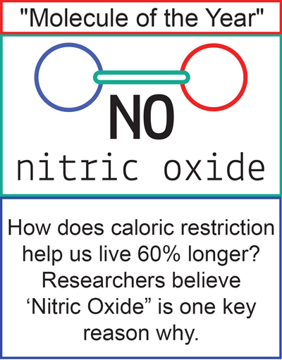 why meditation is the best nitric oxide booster
