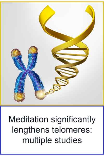 how meditation keeps your DNA and telomeres young and healthy