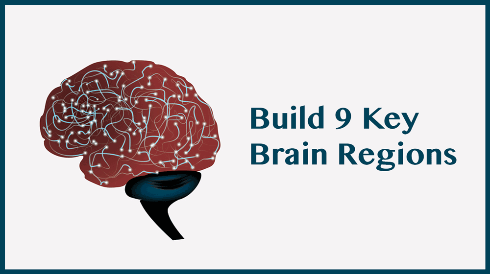 Build a Better Brain with Brainwave Entrainment