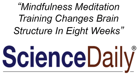 Why we stay stressed out all the time and how neuroplasticity and meditation fix the problem
