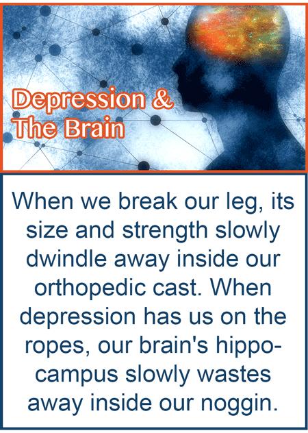 How meditation changes the depressed brain through neuroplasticity