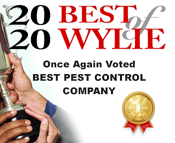Voted Best of Wylie in 2020 for Pest Control Companies
