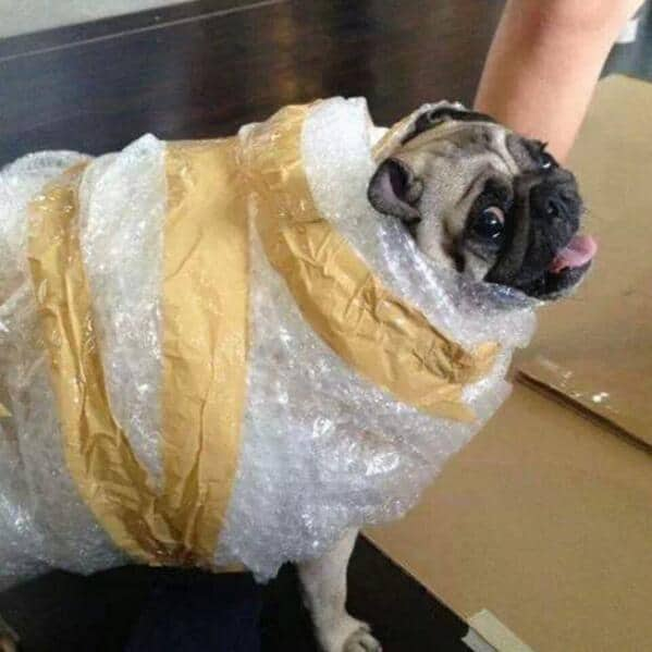 Well that sucks; Your Packages Are About to Be Wrapped in Bubble Wrap That Doesn't Pop