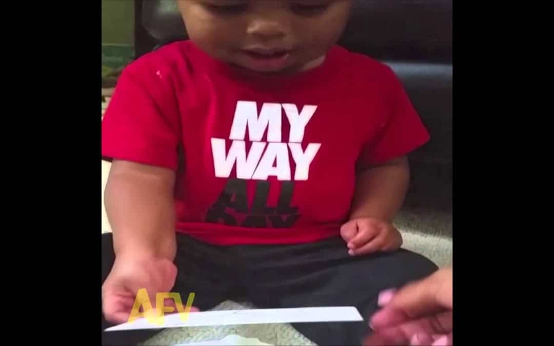 "Li'l Dude Can't Stop Laughing at the Word ""Donkey"""
