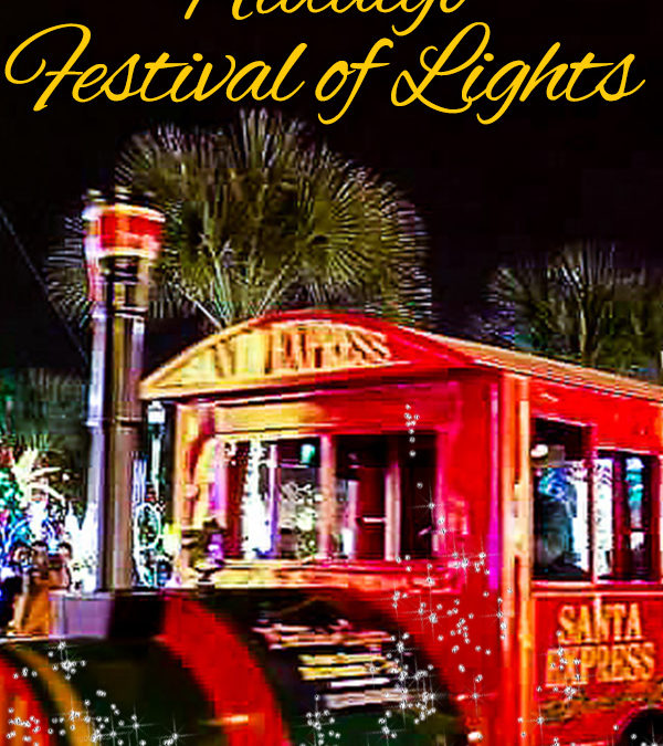 Register to Win a Family 4 pack of tickets to the Trolly at the Hidalgo Festival of lights