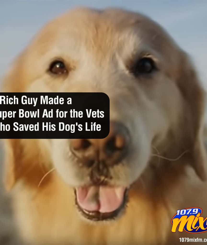A Rich Guy Made a Super Bowl Ad for the Vets Who Saved His Dog's Life