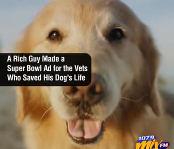 A Rich Guy Made a Super Bowl Ad for the Vets Who Saved His Dog's Life 1