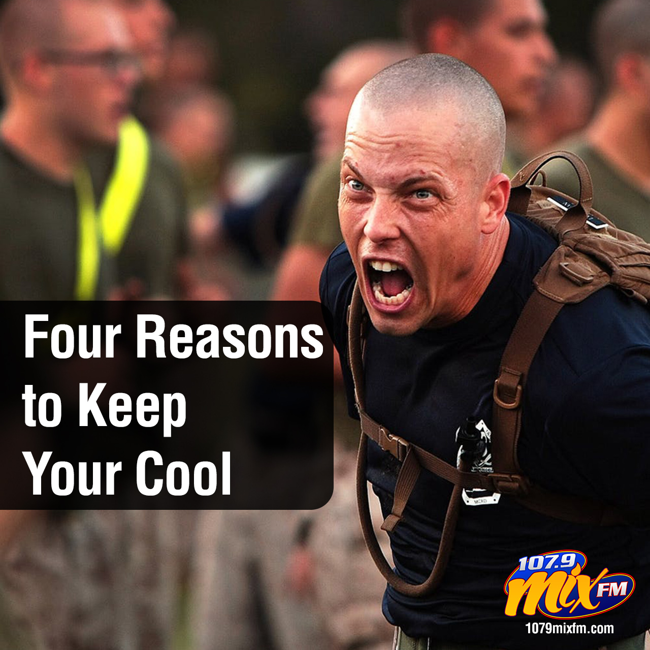 Four Reasons to Keep Your Cool