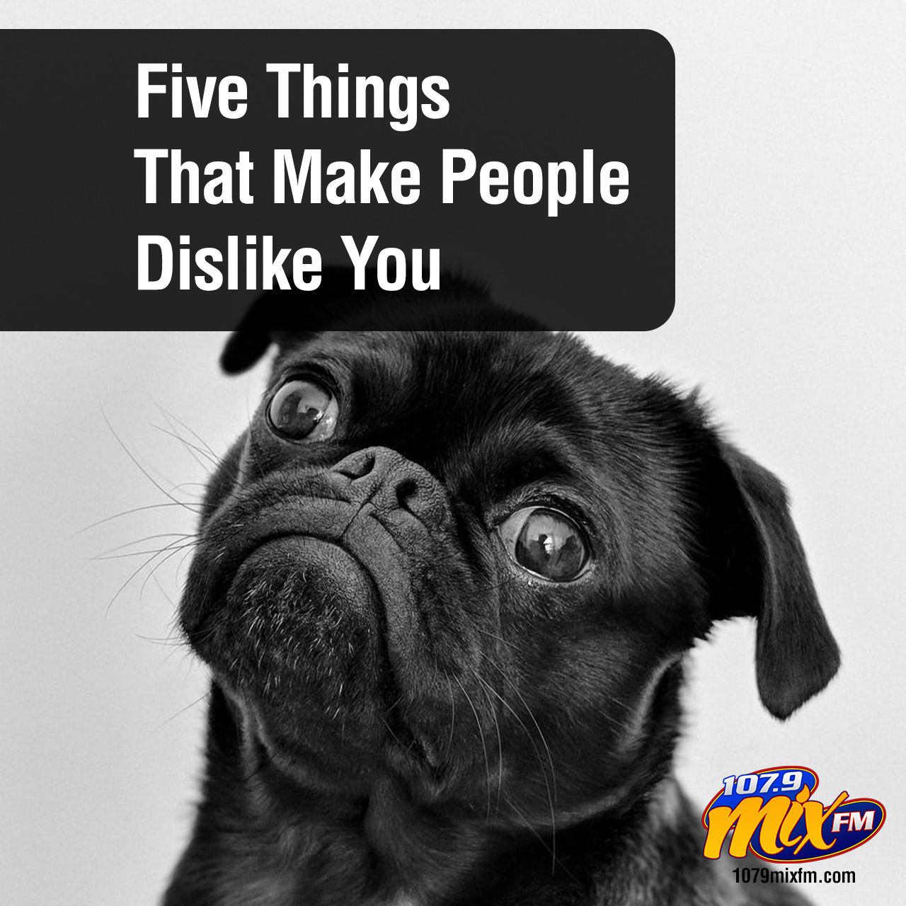 Five Things That Make People Dislike You